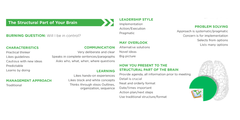 Structural Brain attributes