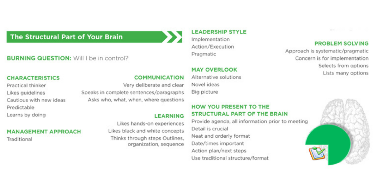 list of characteristics of the structural brain