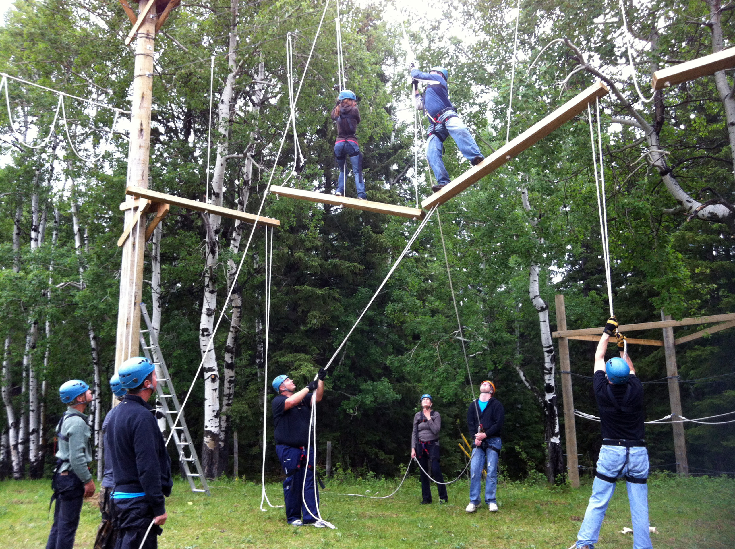 High ropes challenge, teamwork, communication