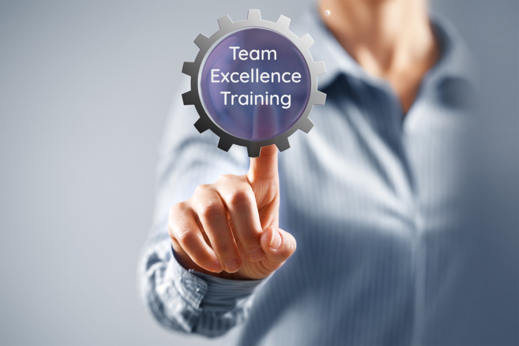 Team Excellence Training