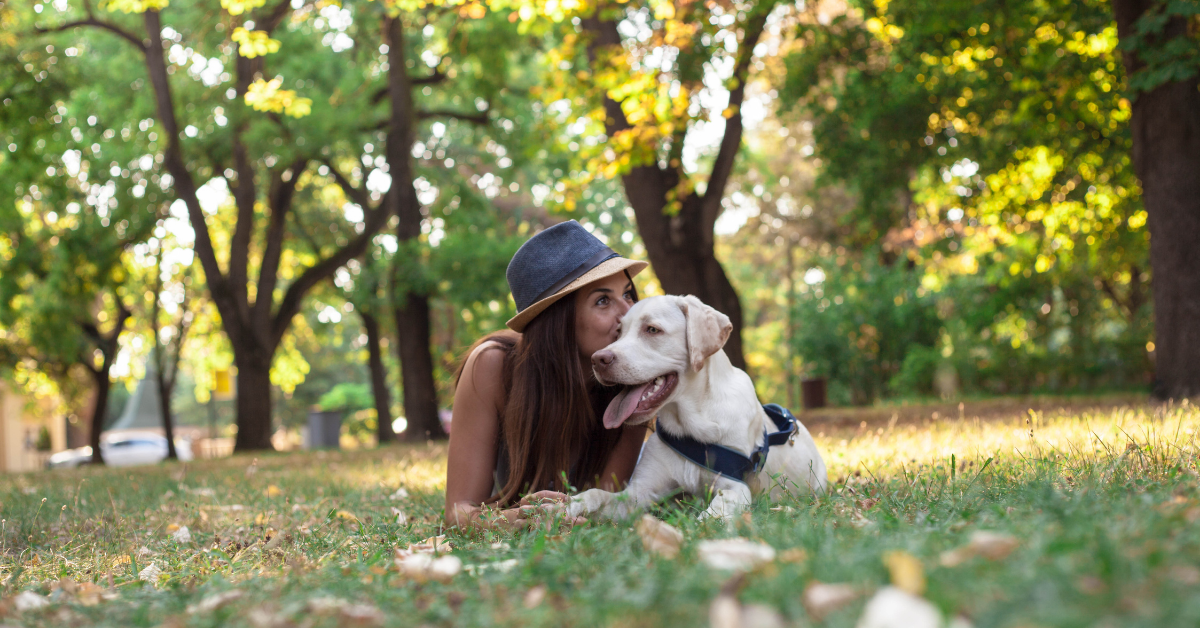 Taking breaks, relax in nature or with a pet